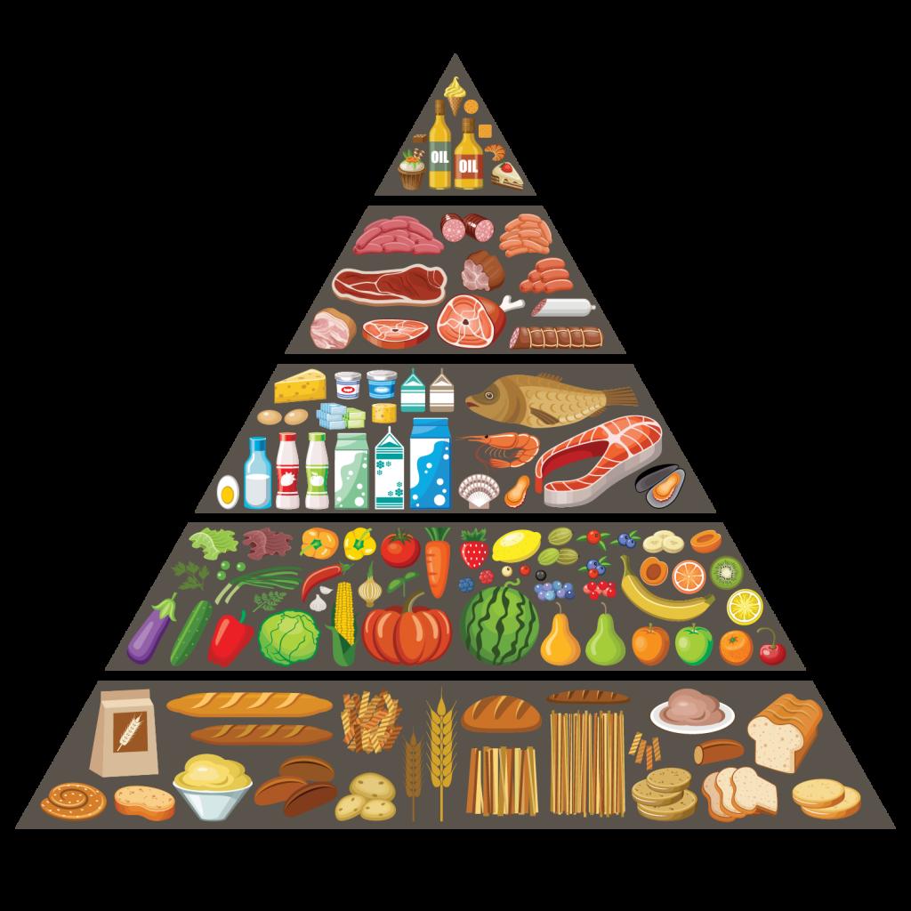 Food-Pyramid-01-1024x1024